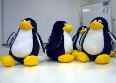 Компьютер под Linux можно захватить с помощью популярного архиватора
